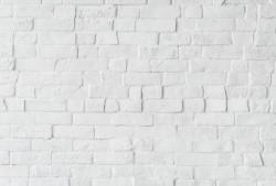 Ladrillo blanco