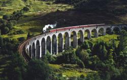 puente con tren